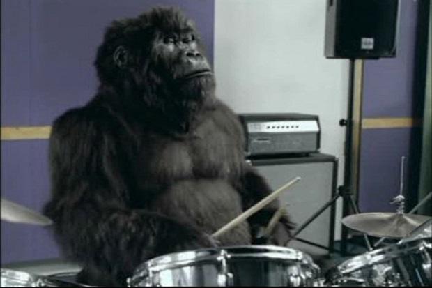 Cadbury drumming gorilla