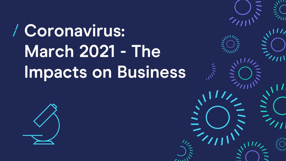 Coronavirus survey: Businesses report tentative signs of recovery
